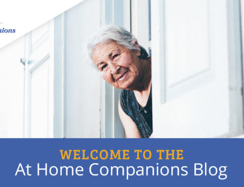 Welcome to the At Home Companions Blog